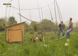 mobiler Hühner-Offenstall