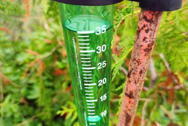 Regenmesser im Garten