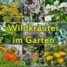 Kollage mit Wildkräutern im Garten - Blätter und Blüten, und ein Distelfalter